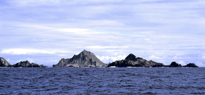 Feds Weigh Options for Eradicating Invasive Mice on the Farallon Islands